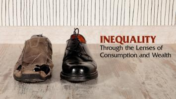 Inequality through the Lenses of Consumption and Wealth