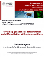 Revisiting gonadal sex determination and differentiation at the single cell level